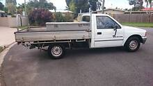 1990 Holden Rodeo Tray Back Manoora Cairns City Preview