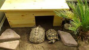 Schildkrötenhaus-Schildkröten Terrarium 50X33X22 cm NEU