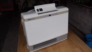 Gas heater, Rinni convector 406TR