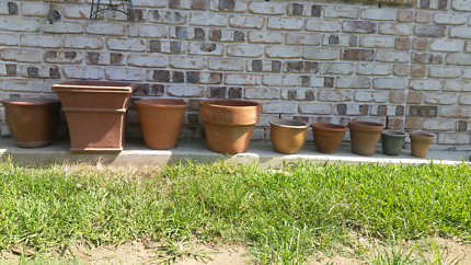 Bulk lot of terracotta pots for $20
