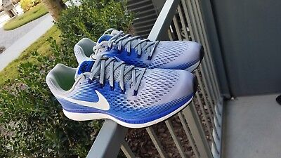 544e19151572b Nike Air Zoom Pegasus 34 (880555 007) Wolf Grey White-Blue size 13