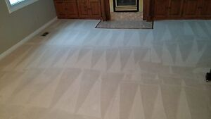 CARPET STEAM CLEANING - UPHOLSTERY -TILE AND GROUT Kitchener / Waterloo Kitchener Area image 5
