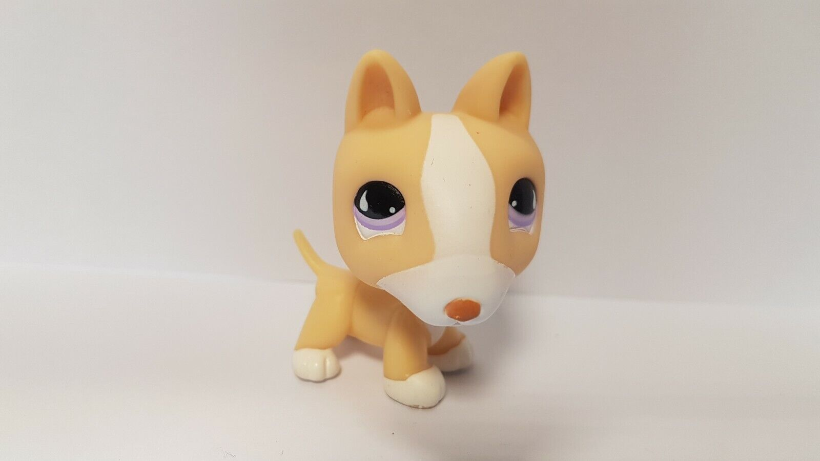 Figurine  petshop  original chien dog bull terrier 860 pet shop lps (1)