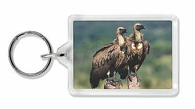 Vultures on Watch Photo Keyring Animal Gift, AB-92K