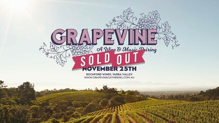SELLING GRAPEVINE YARRA VALLEY