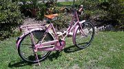 Ladies road cruiser bike Ferny Hills Brisbane North West Preview