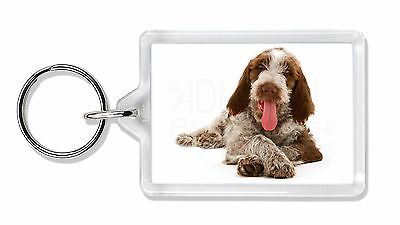 Italian Spinone Dog Photo Keyring Animal Gift, AD-SP2K
