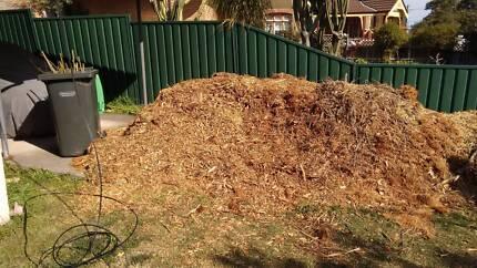 Free mulch Croydon Burwood Area Preview