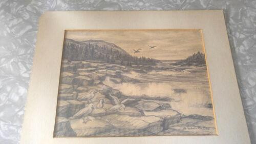 Artist Elizebeth Belting pencil art picture drawing seagulls signed. art vintage