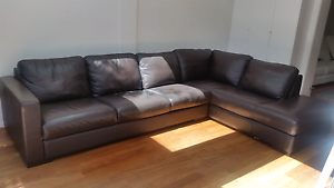 Leather modular lounge Bronte Eastern Suburbs Preview