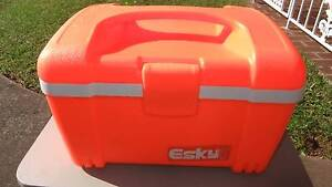 Esky 12L High Visibility Ice King Cooler Castle Hill The Hills District Preview