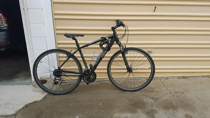 GIANT Roam Bike