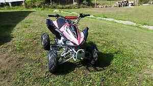 50cc quad in brand new condition Morisset Lake Macquarie Area Preview