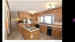 Looking for kitchen cabinets