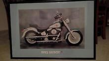 FAYBOY FRAMED PICTURE,OFFICIAL HARLEY DAVIDSON Woodvale Joondalup Area Preview
