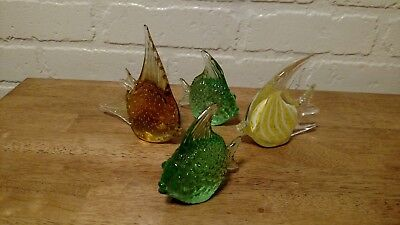 beautiful little school of glass fish - Fish Glasses