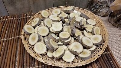 30 pc 1-1.25 in Tree Branch Rustic Wood Log Slices DIY round craft discs wooden