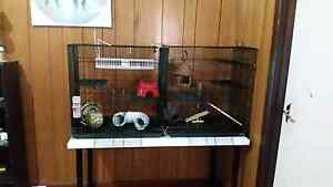 Two large pet rat cages and accessories. Buy separately/together Como South Perth Area Preview