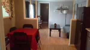 newly renovated 1 bedroom plus den