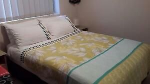 ROOM TO RENT Annerley Cosy Spacey Apartment Annerley Brisbane South West Preview