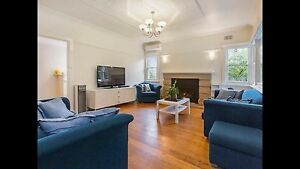 Large & small blue couch, sofa, club chair Rye Mornington Peninsula Preview