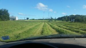 Farm land and barn for sale 15 minutes from Truro