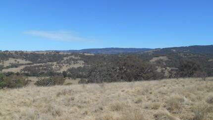 88 ACRES FOR ONLY $89,950