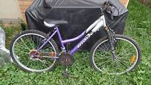 3 Old bikes in need of a lot of love Fitzgibbon Brisbane North East Preview