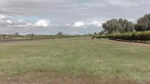 25  FLOOD FREE T0WN ACRES Moorook South Loxton Waikerie Preview