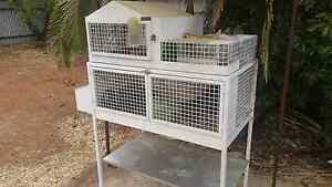 Guinea pig cage Craigmore Playford Area Preview