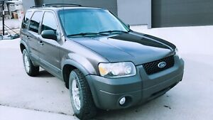 Ford Escape XLT -2007