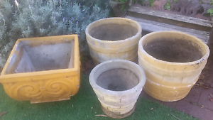 Garden Pots Mosman Park Cottesloe Area Preview