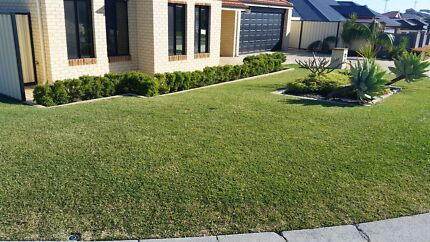 Bayview Mowing And Garden Services  Yangebup Cockburn Area Preview