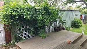 12m x 3.6m shed / carport / garage Caulfield South Glen Eira Area Preview