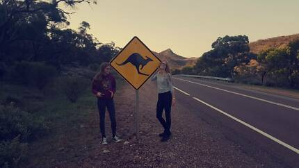 TWO GERMAN GIRLS LOOKING FOR FARM WORK Cairns Cairns City Preview