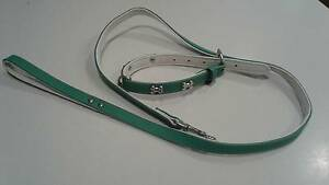 Bones Aqua Leather Dog Collar and Lead Winmalee Blue Mountains Preview