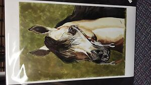 Hand Painted Horse Paintings