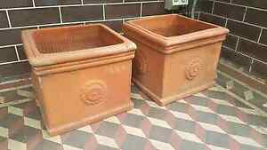 Terracotta Pots pair Croydon Burwood Area Preview