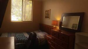Cosy room available now City, Curtin, Burswood, Cafe Strip East Victoria Park Victoria Park Area Preview