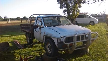 D21 diesel needs gearbox