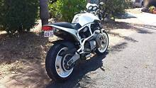 2001 Buell White lightening Steiglitz Gold Coast North Preview