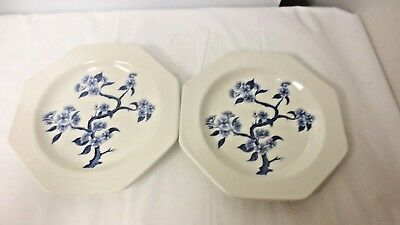 "Lot 2 J & G Meakin Royal Staffordshire England Dynasty Octagon 7"" Plates"