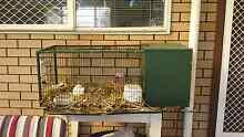 Metal rabbit hutch Hackham Morphett Vale Area Preview