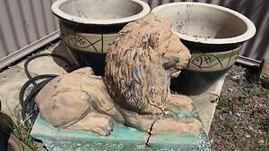 Lion Garden Concrete statue Narangba Caboolture Area Preview