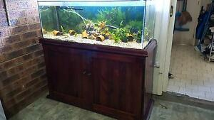 4ft Fish Tank with wooden cabinet Glenfield Campbelltown Area Preview