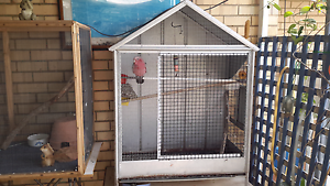 Pink and Grey cocky with cage Geraldton Geraldton City Preview