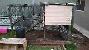 Chicken coop Revesby Bankstown Area Preview