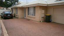 Room for Rent Carlisle East Victoria Park Victoria Park Area Preview