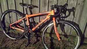 Fuji ACE 650c road racing bike North Lakes Pine Rivers Area Preview
