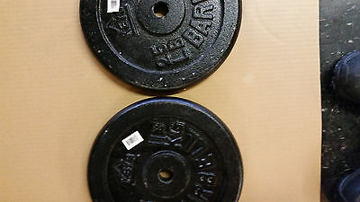 Pair of 25 lb Standard Weight Plates